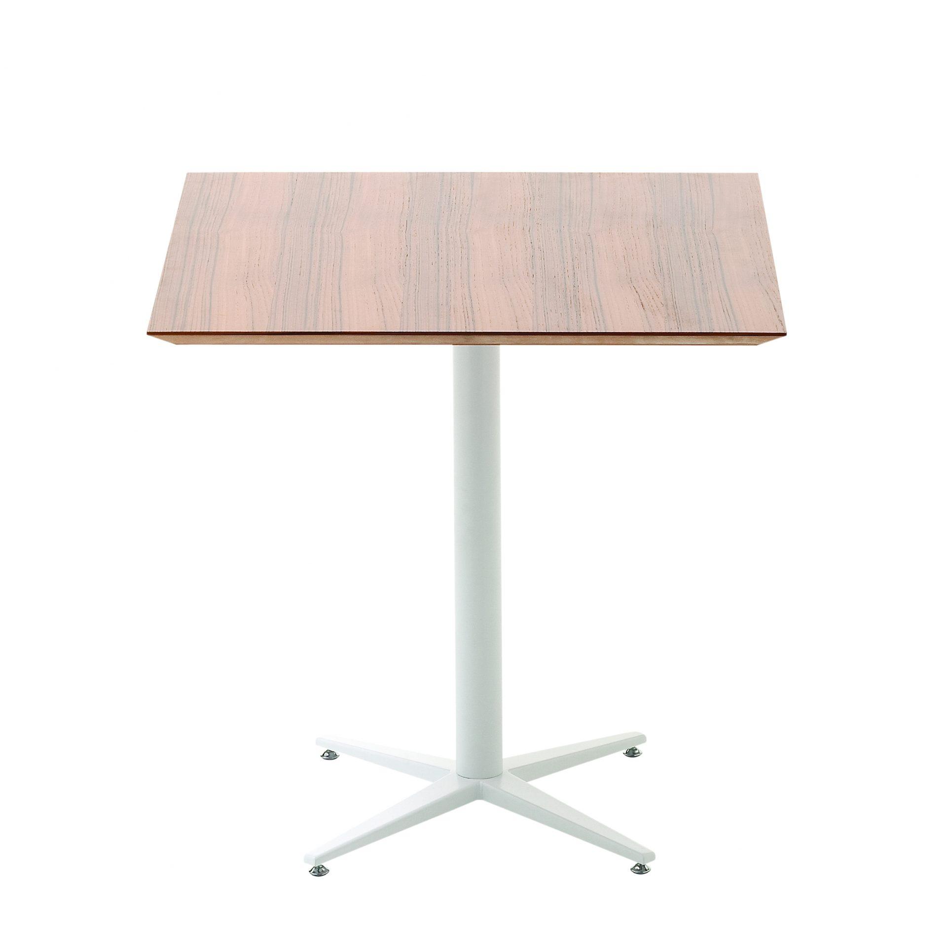 Flora - tavolo L'Abbate